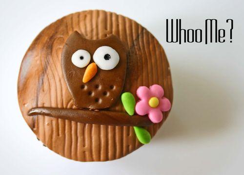 Owl guy