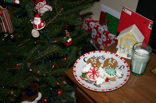 Xmas cookies2
